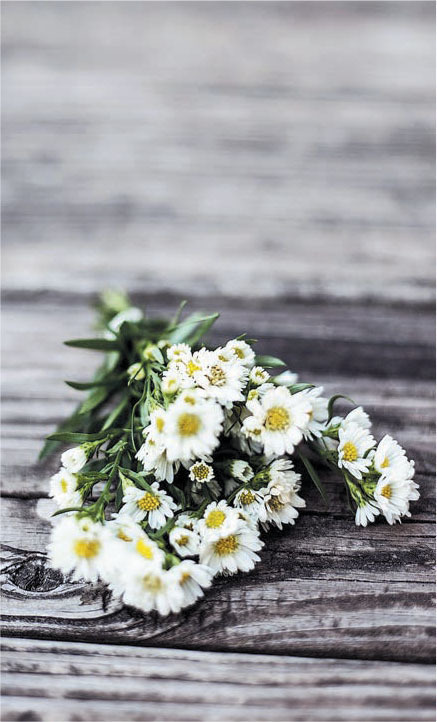 Yellow white flowers on wood deck